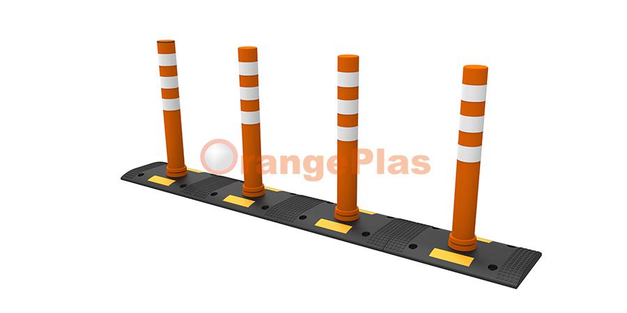 Pedestrian Crossing System-1